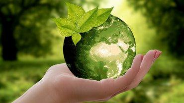 Nachhaltig wirtschaften und handeln