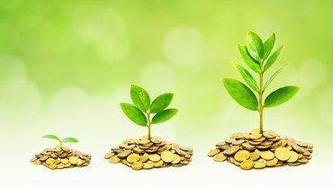 Wachstum Finanzen Baum nachhaltig Natur Geld